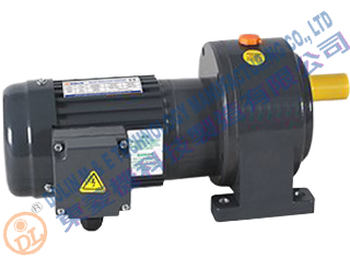 DL Geared motors horizontal