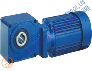 Bevel Helical Geared Motor 200w ratio 15:1