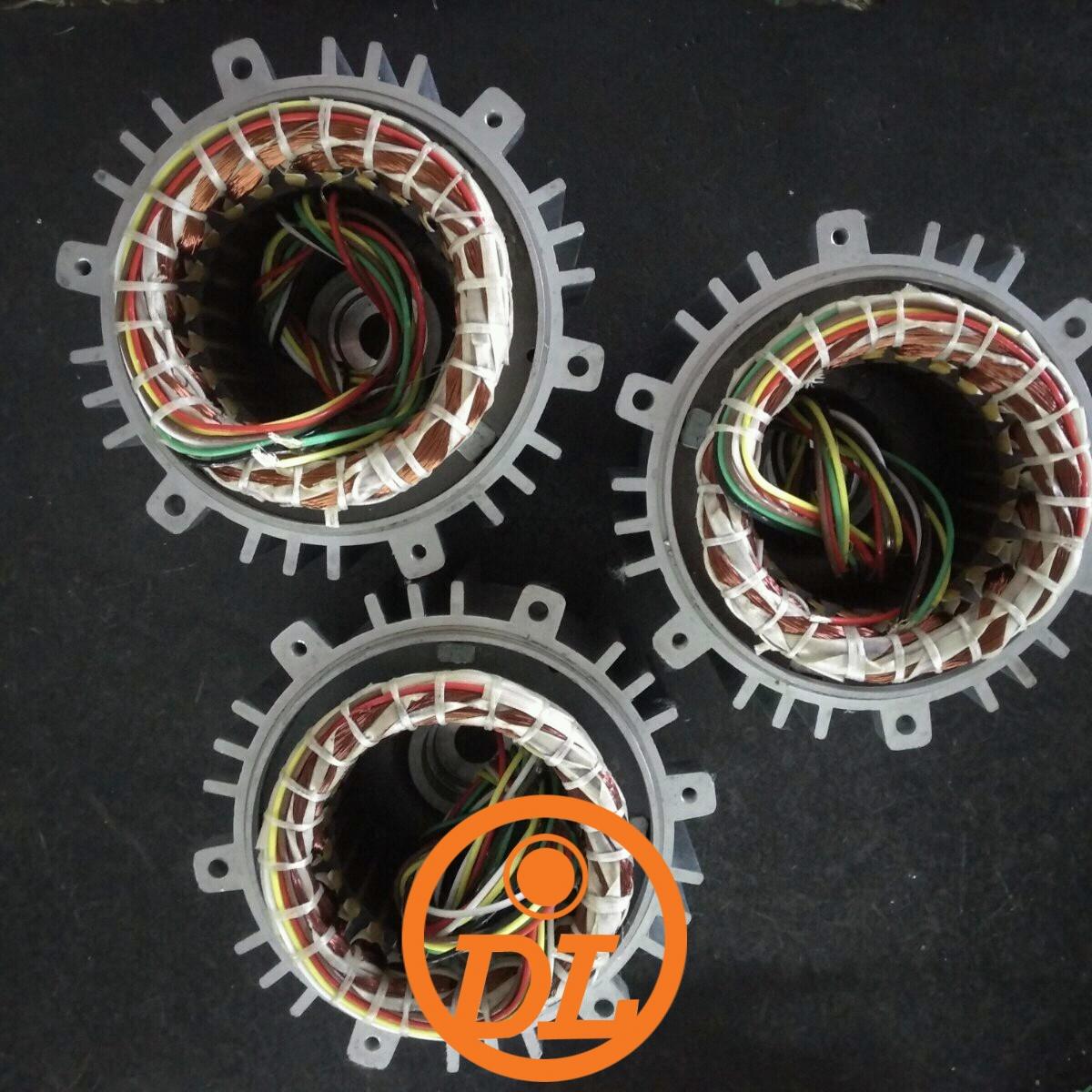 electric motor roto